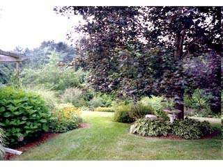 Freedom Lawn Landscape