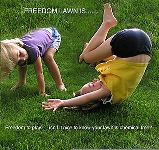 Freedom lawn kids to play copy