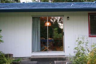 Window IMG_3067