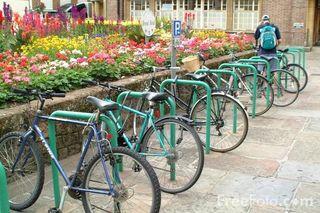 Bicycle 21_02_13---Bicycle_web