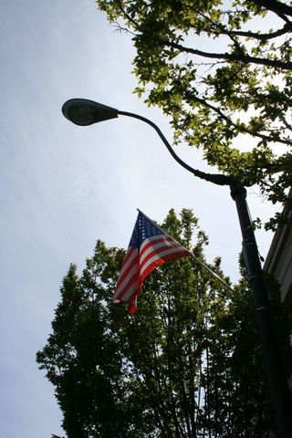 Flag Light Post IMG_8861