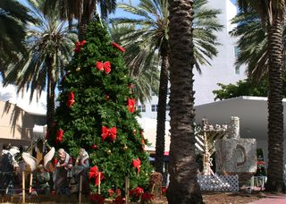 Christmas Tree Cropped Snow Miami Airplanes Lincoln Rd 245