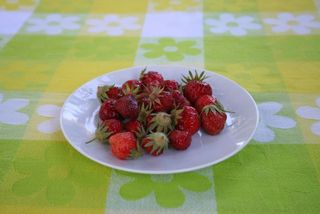 Strawberries IMG_1697