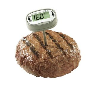 Thermometer_in_burger_cutout[1]