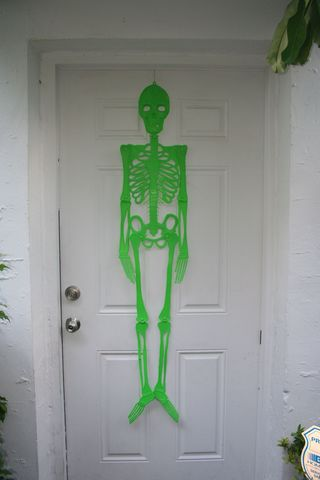 Halloween Skeleton Green IMG_4700_2