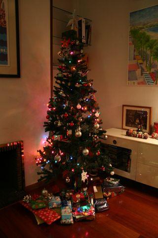 Christmas Tree 2010 Madrid 014
