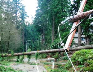 Power-Line-Down