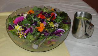 Green Salad Organic