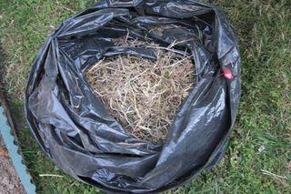 Bag of Weeds