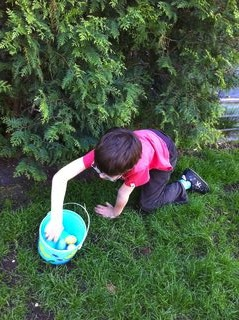 Rafa Hunting Easter Eggs 6a00e550081576883401a73dabbf6b970d-320wi