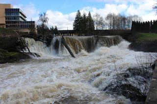Tumwater Falls Spring