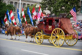 DC Parade Horses hires_130527-A-AO884-180