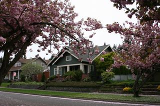 House Flowering Trees