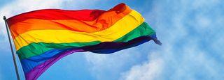 Gay Pride Flag heroFlag1_4