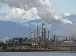 Petroleum Refinery_31911