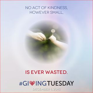 Giving Tuesday 2015-gift-never-waster-graphic