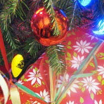 Package Under Christmas Tree Closeup