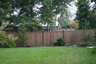 Fence IMG_3244