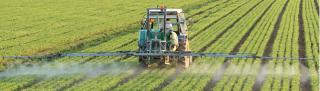 Tda_pesticide