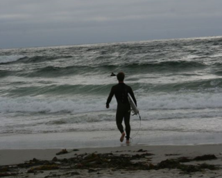Surfer Headed to Ocean Monteray 7-13 183