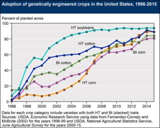 GMO Chart