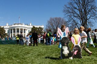 White_House_Easter_Egg_Roll_dogs4999