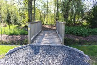 Path IMG_6503