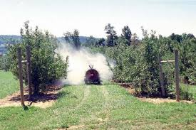 Sprayer Spraying Pesticides