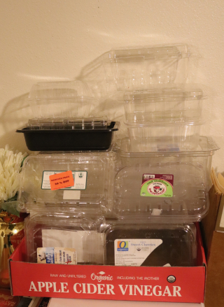 IPlastic Food Boxes to Reuse