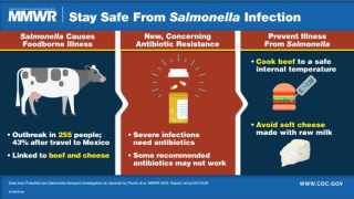Salmonella in Beef And Soft Cheese Linked to Antibiotic-Restitant Pathogen