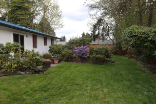 Yard in the Spring Seattle Area