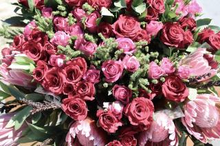 Flowers-660611_1920