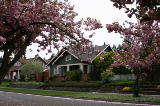 House-Flowering-Trees3-600x397