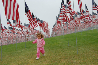 Toddler-in Middle of Dozens of American Flags508666_1920