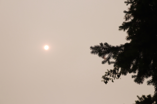 Smoky Air in Tumwater Wash in September 2020